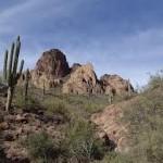 Arizona Moving Companies, AZ Moving Company